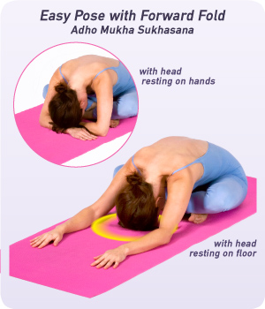 how to do easy pose with forward fold  yogaoutlet