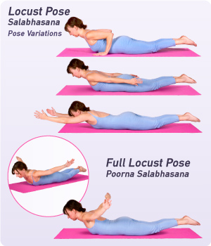 Image result for locust pose