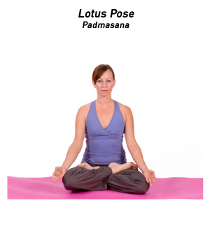 How to do lotus pose in yoga sit on the floor with your legs extended spine straight and arms resting at your sides this is seated staff pose dandasana mightylinksfo