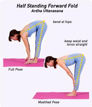 Image result for Ardha Uttanasana